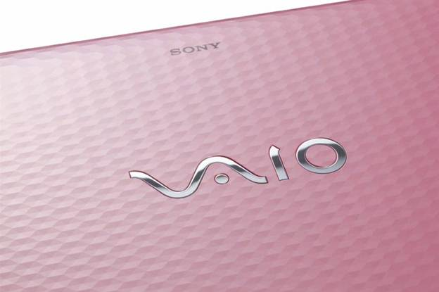 Sony Vaio E series VPC-EH32FX/P Pink texture