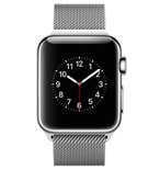 Apple Watch 38mm Stainless Steel Case with Milanese Loop MJ322VN/A