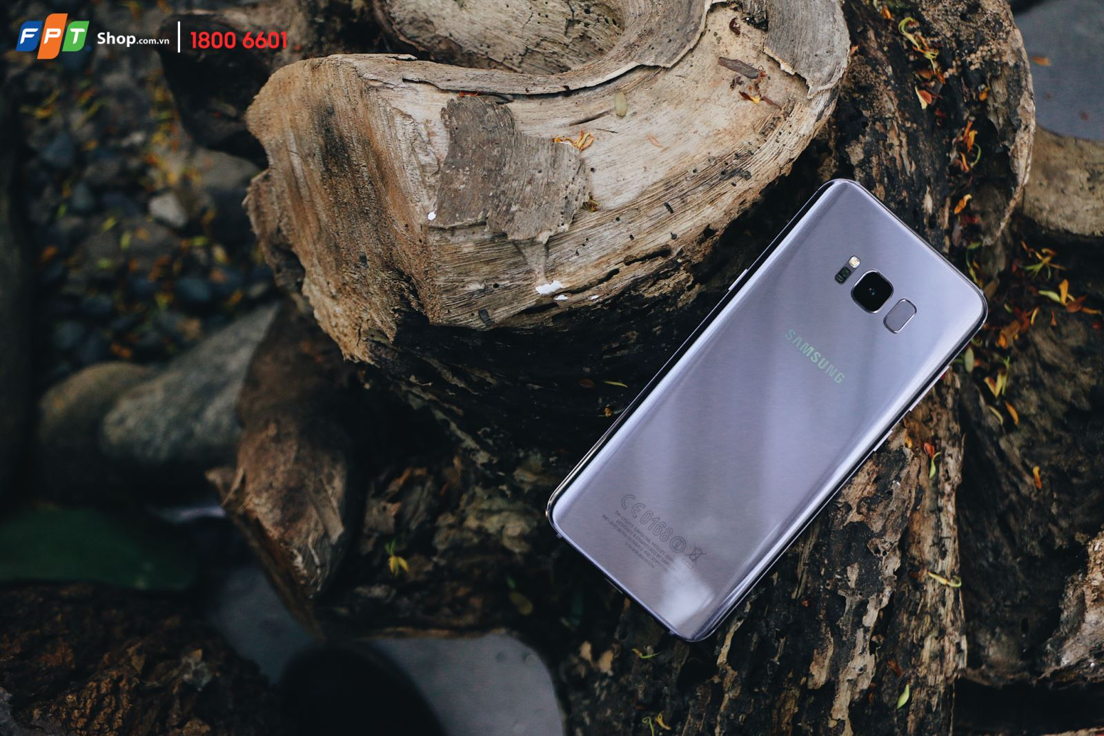 Galaxy S8+ Orchid Gray