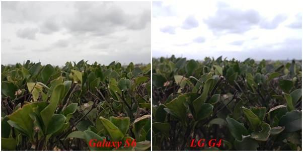ảnh được chụp từ camera chính của Galaxy S6 và LG G4