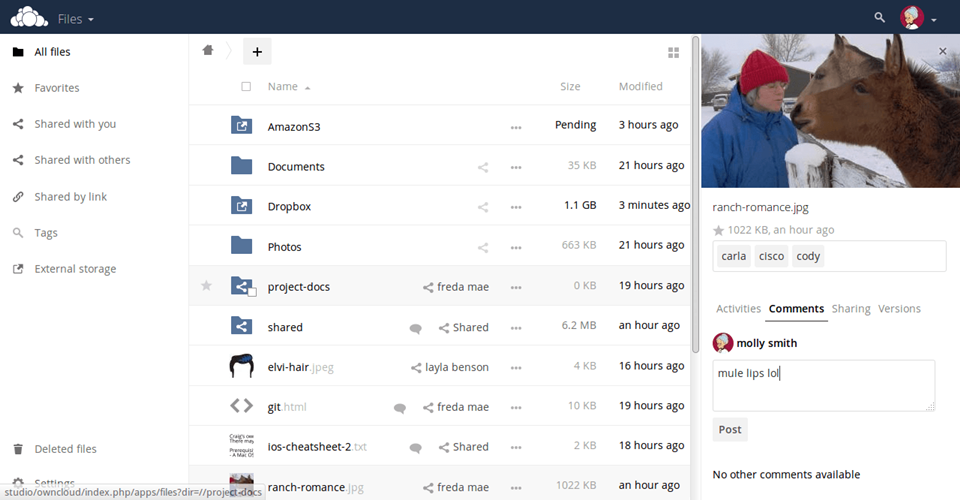 Giao diện của OwnCloud