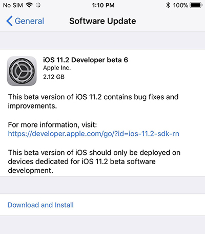 ios 11.2 beta 6 download